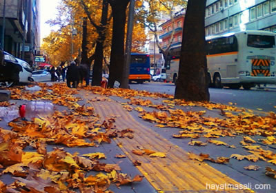 Ankara'ya Sonbahar Geldi