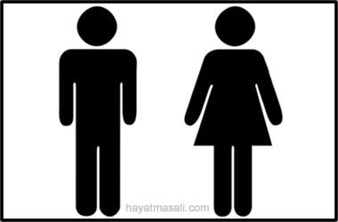 Kız ve Erkek