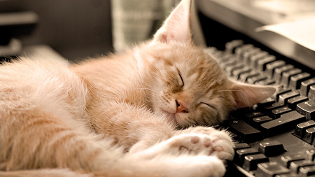 uyku zamani