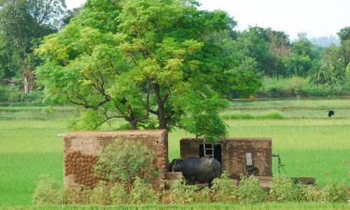köy hayati