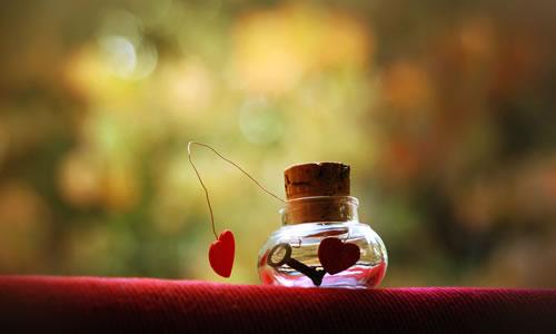 Aşkın Belgeseli