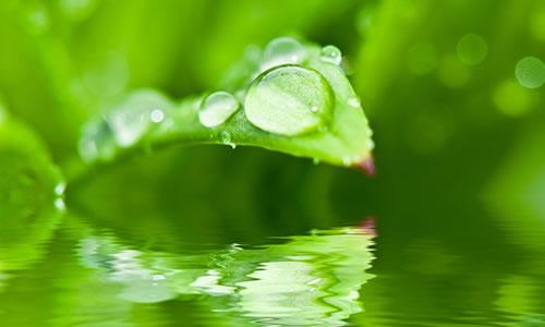 Yağmur Bana Ben Yağmura