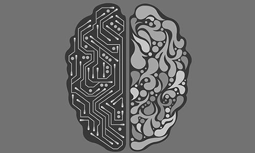 Beynin Ne Anladığı
